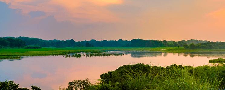 Scenic Photo Image
